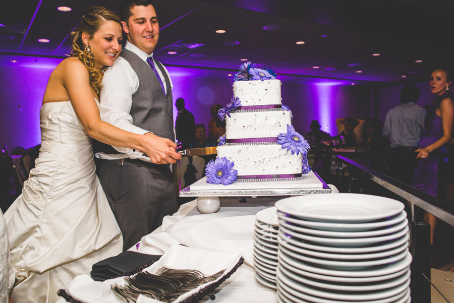 cake cutting by denver wedding photographer dan hand