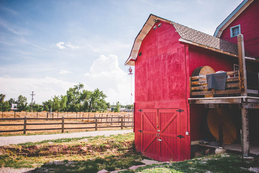 d-barn longmont