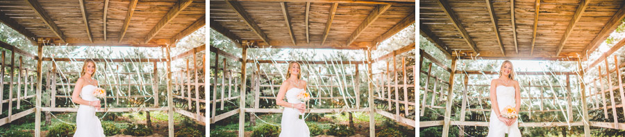 bridal portraits at the d-barn in longmont