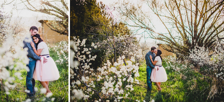 Stunning engagement photos near apple blossoms in colorado