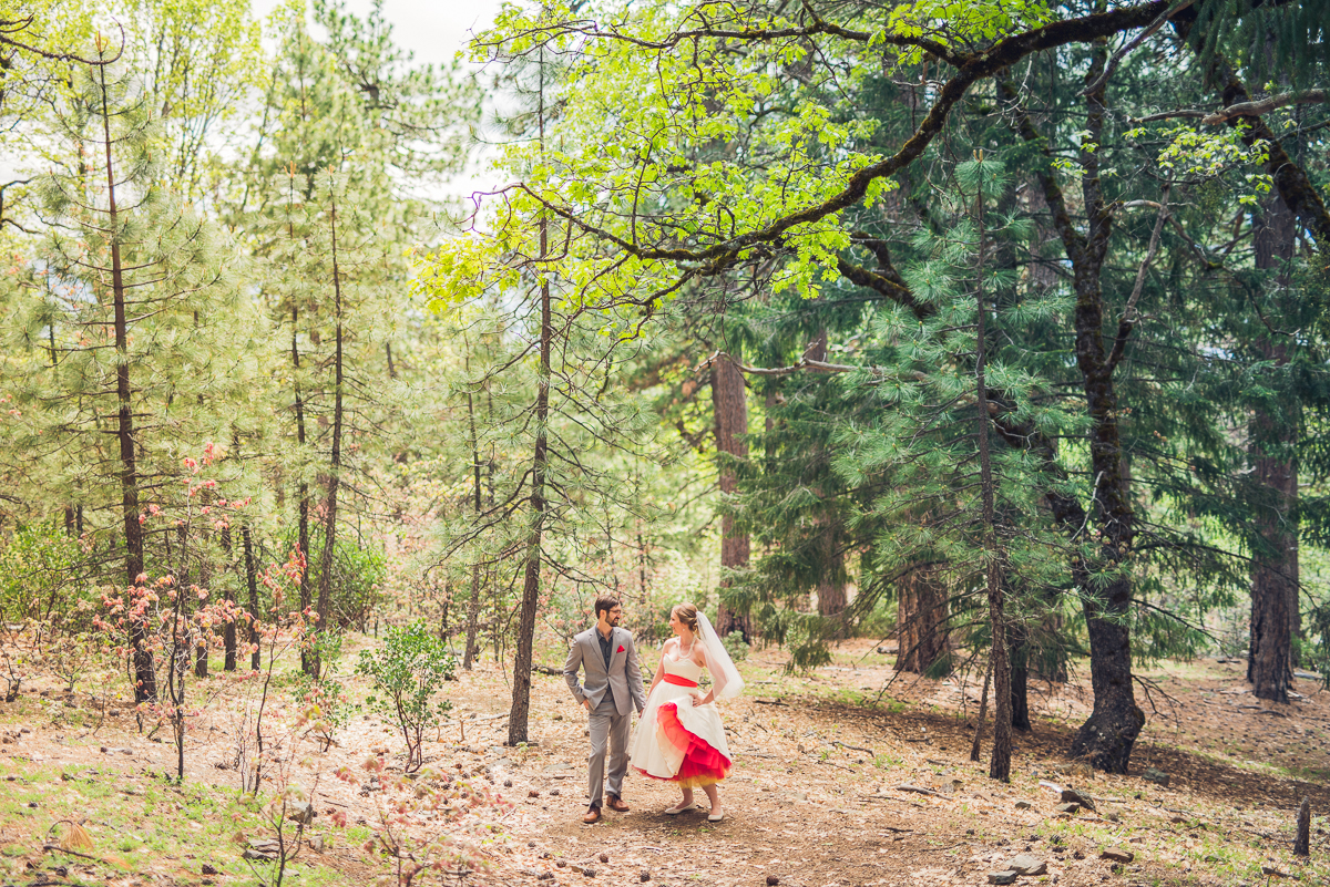 mendocino forest wedding photos
