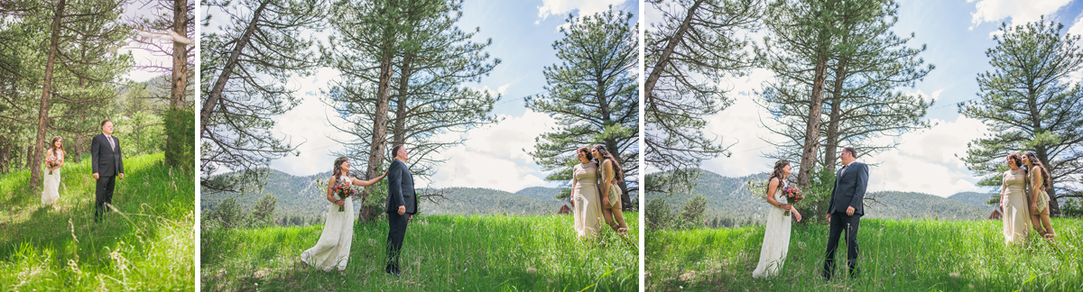 father of bride dress reveal in colorado