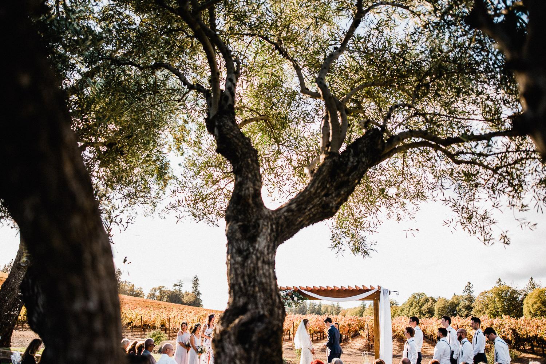 Boatique-Winery-Wedding (34)