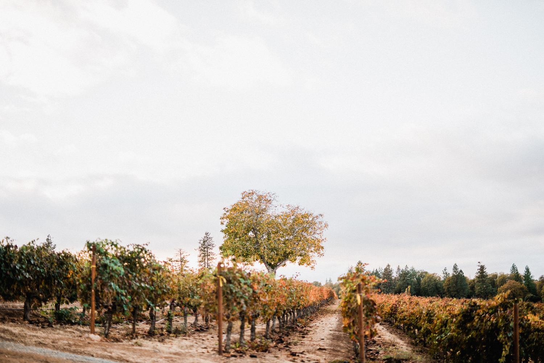 Boatique-Winery-Wedding (55)