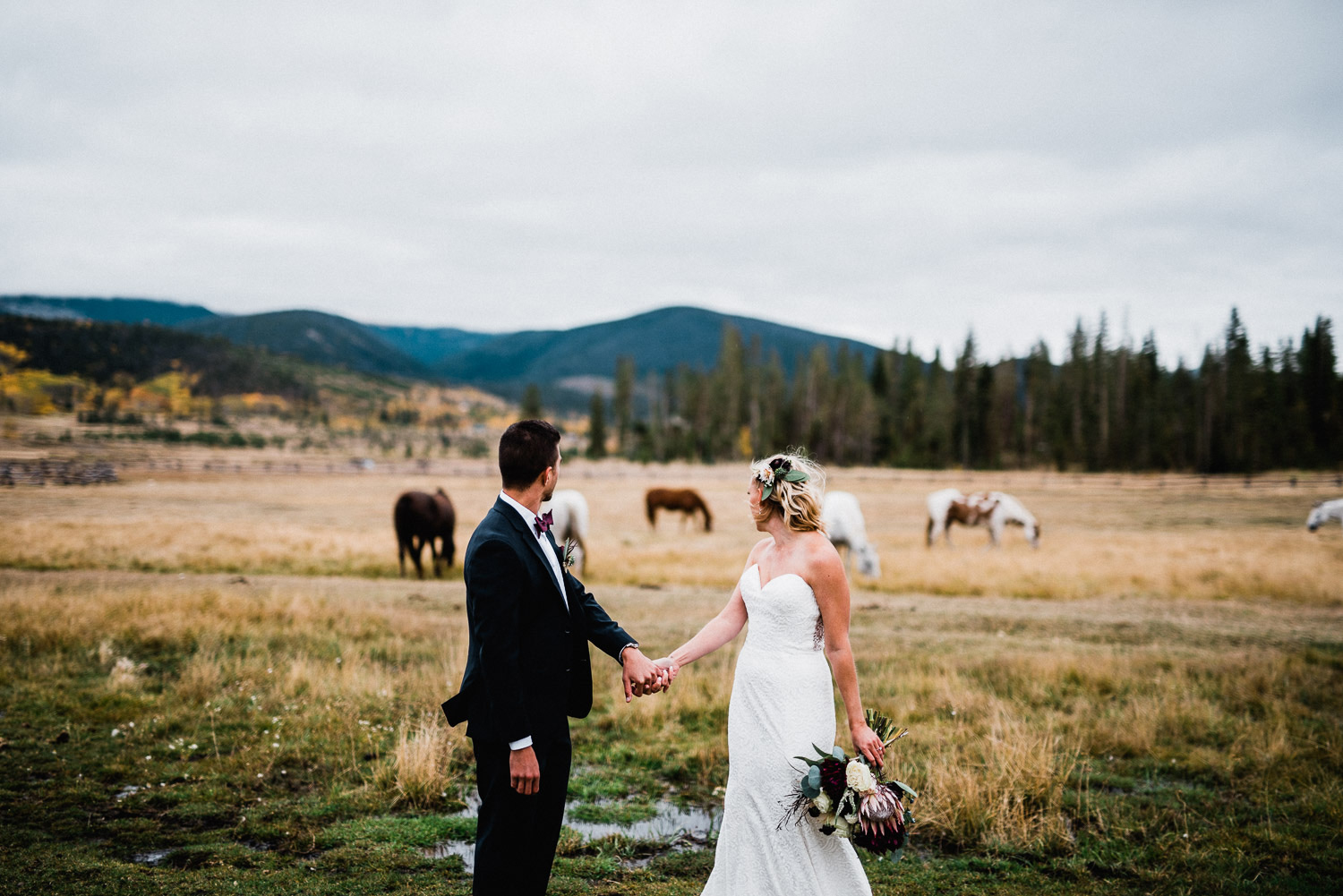 wedding portrait with horses at devil's thumb ranch